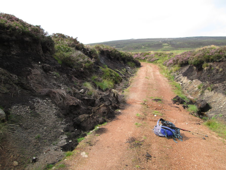 Hill track with collapsed peat